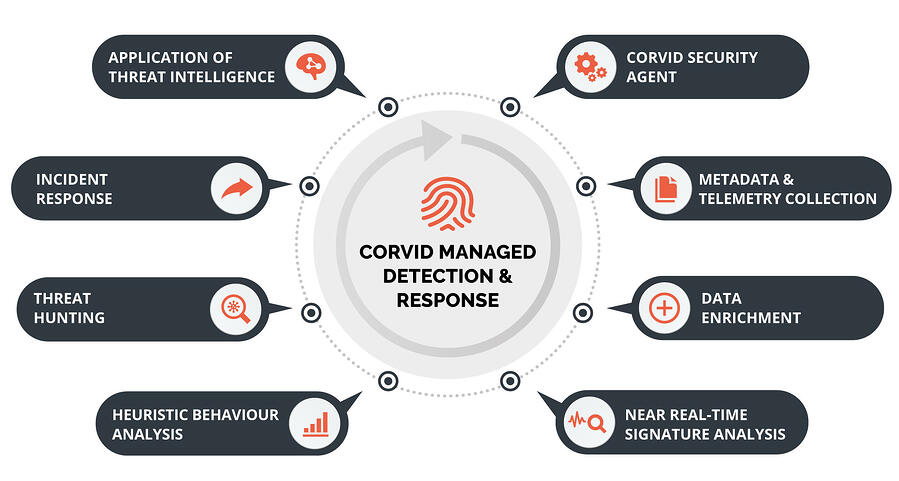 managed-detection-and-response-corvid